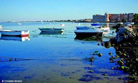 Découverte de l'île de Djerba