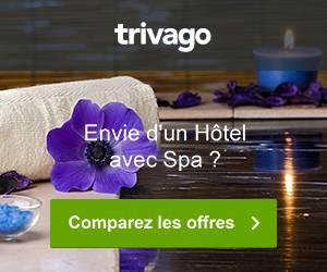 Trivago, envie d'un hôtel avec Spa