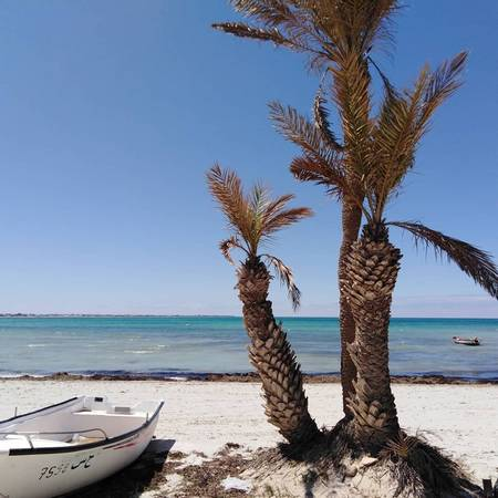 The Sandy Beach Dar Jerba Djerba