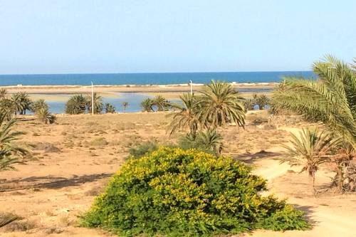 Chambre d'hôtes Djerba Dar Jasmin