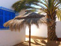 Maison 2 chambres à louer Djerba pas cher proche plage